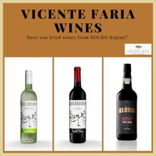 Vicente Faria 3 Bottles Taster Pack